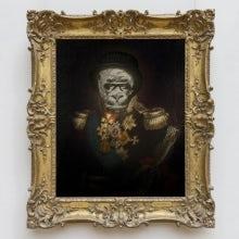 Blunt Gorilla's avatar